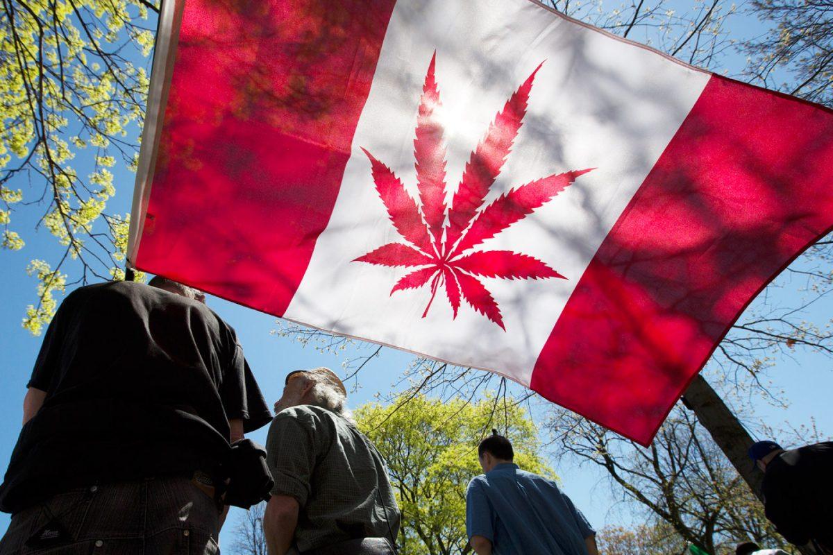 Cannabis Legalization in Canada – Year 1